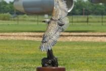 Abilene Trophy Recipient